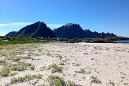 Andenes Camping - Hvalsafari Andenes - Whalesafari Andenes