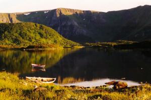 Sommer i Andøy - Hvalsafari Andenes - Whalesafari Andenes