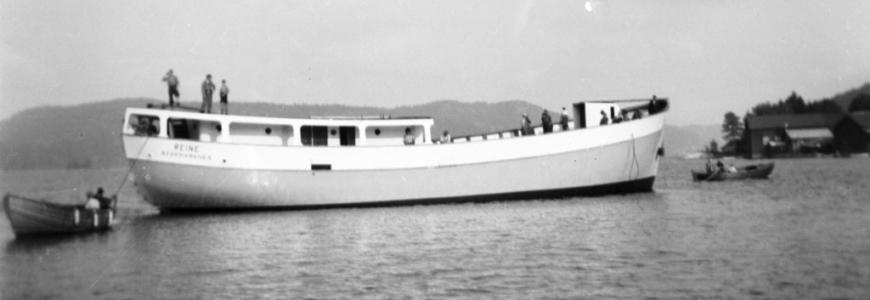 MS Reine - Hvalsafari Andenes - Whalesafari Andenes
